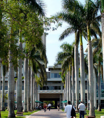 University Of Miami Tuition Plus Room And Board